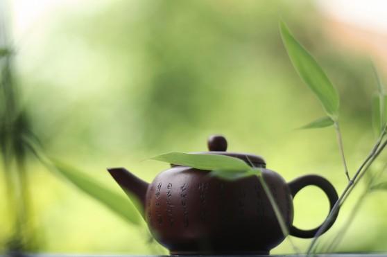 что нужно знать о чае