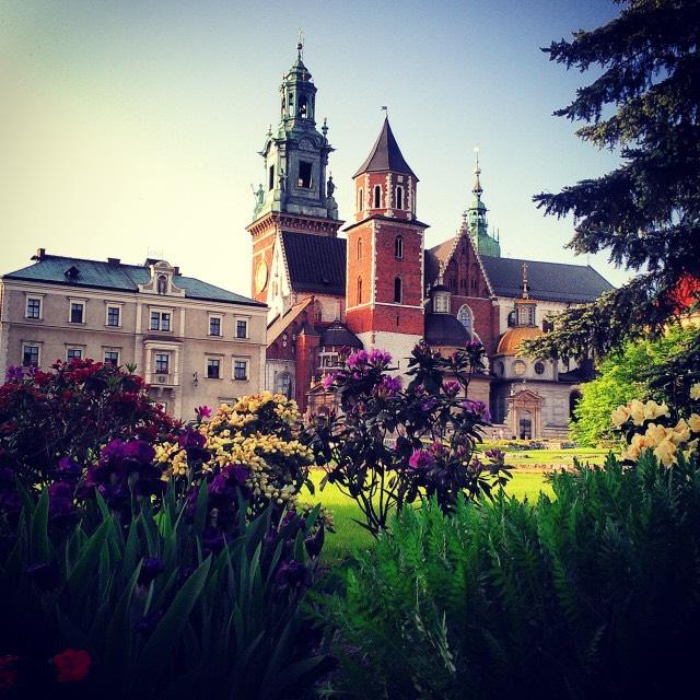 Медицина в Польше