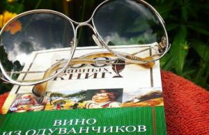 Стать популярным писателем! Шаги к успеху. Эльвира Барякина