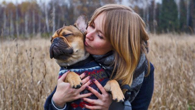 Как собака стала человеком. Конкурс статей