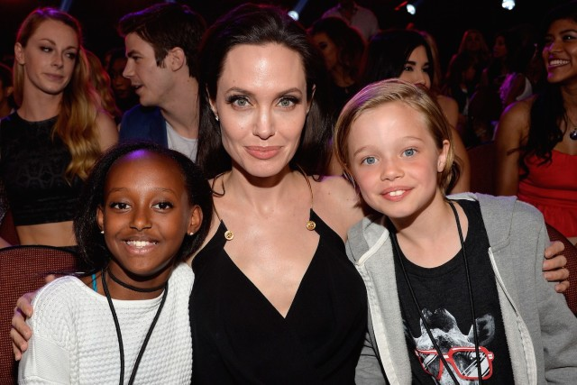 Анджелина Джоли получила опеку